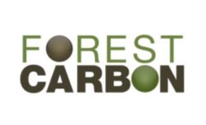 Carbon balancing